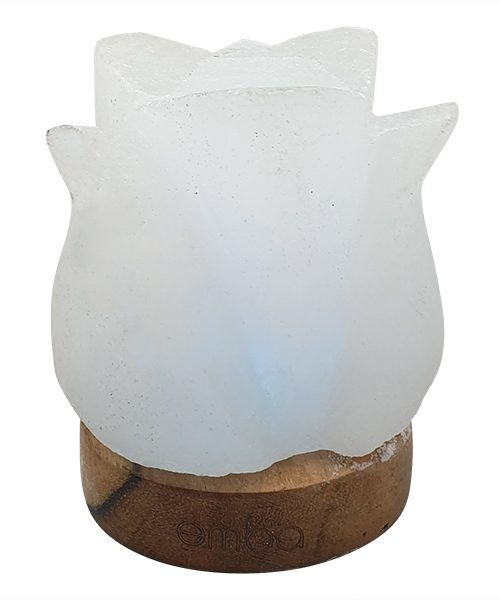 white-carved-salt-lamp-esl103