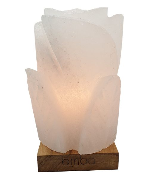 white-carved-salt-lamp-esl131